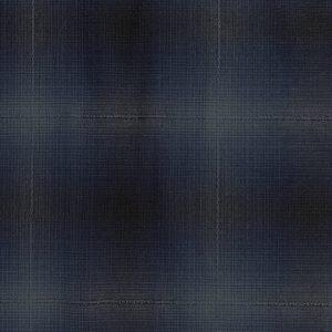 blue yarn dyed dobby japanese fabric